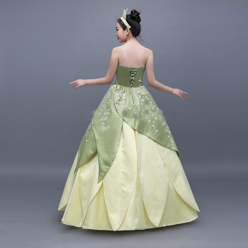Princess and The Frog Princess Tiana Costume