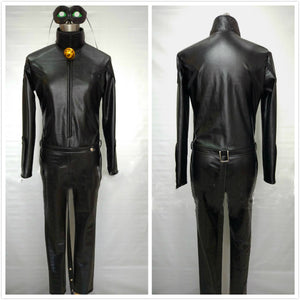 The Miraculous Ladybug Black Cat / Cat Noir Costume
