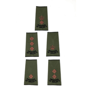 PWRR Officers Rank Slides in Olive