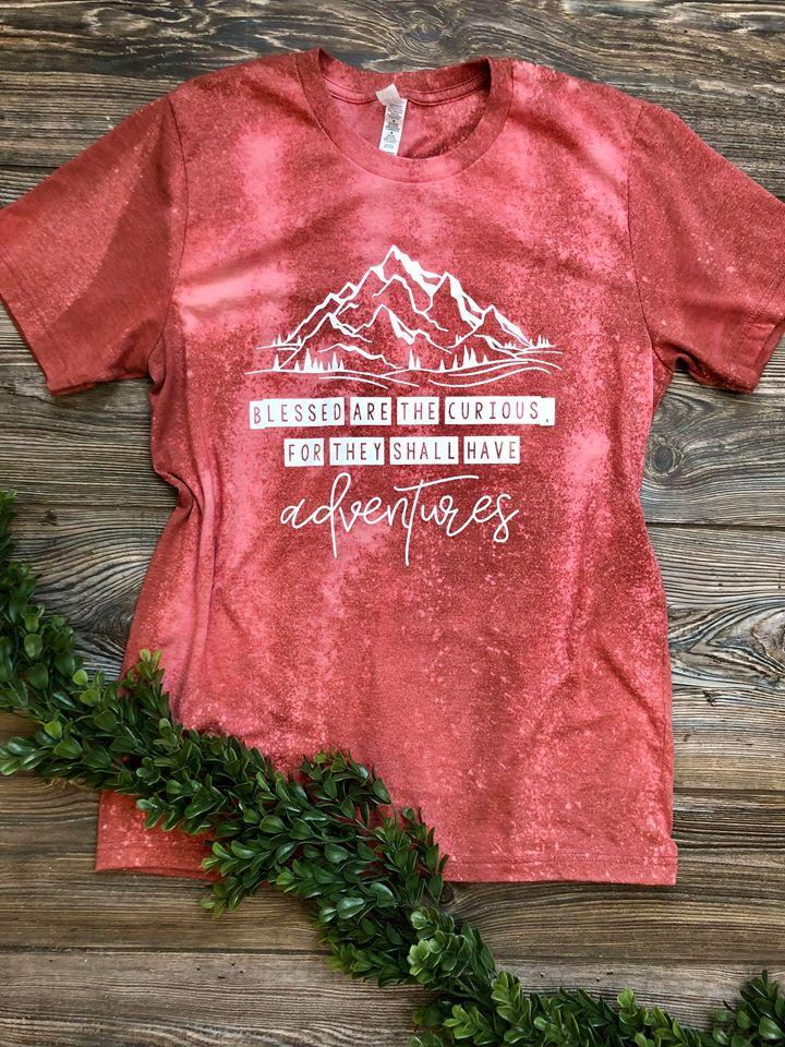 Blessed Are The Curious Heather Clay (Distressed) DROPSHIP