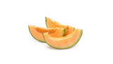 can dogs eat cantaloupe melon