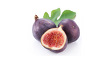 can dogs eat figs poisonous
