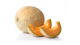 can dogs eat melon cantaloupe fruit