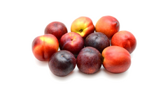 can dogs eat peaches and plums cyanide poisoning