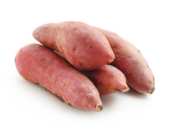 can dogs eat sweet potatoes
