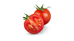 can dogs have tomatoes poisonous solanine ripe