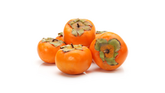 can dogs have persimmons fruit