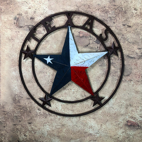 METAL LICENSE PLATE TEXAS CIRCLE
