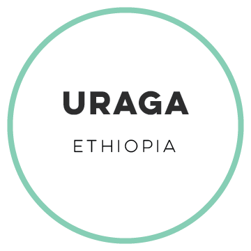 Ethiopia Uraga- 5lb Bag (Wholesale)