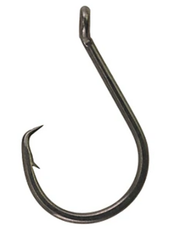 Berkley Fusion19 Circle Hook