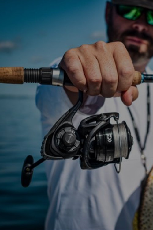 Discount Tackle Fishing Reels