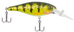 Berkley Bad Shad Medium Diving Crankbait