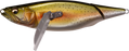 Megabass i-WING 135 Winged Topwater Lure
