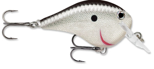 Rapala DT Fat 03 Shallow Square Bill Crankbait