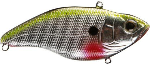 Chrome Shad