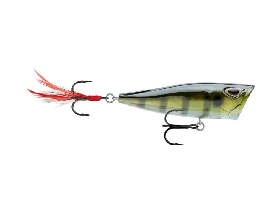 Storm Arashi Cover Pop 3 1/8 inch Topwater Popper