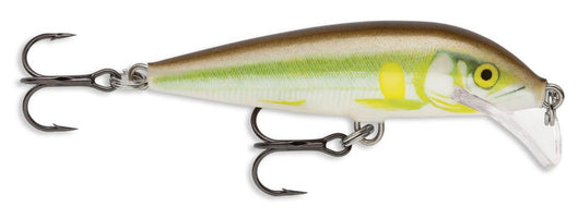 Rapala SRCD05 Scatter Rap Countdown 2 3/4 inch Ayu
