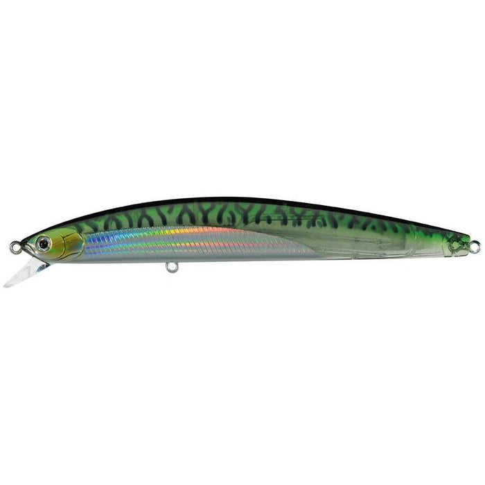 Translucent Green Mackerel