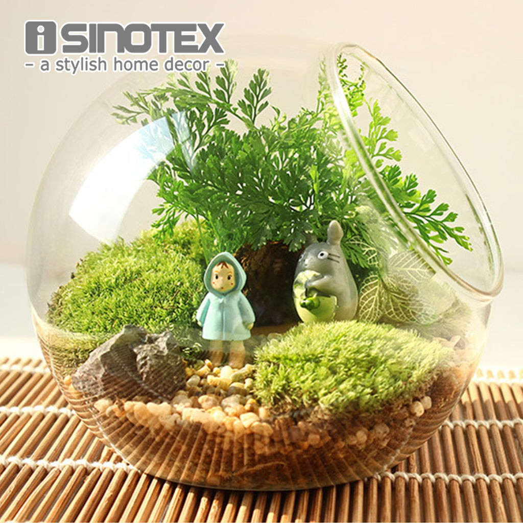 1PCS Oblique Spherical Glass Vase Flower Hydroponic Fleshy Micro Landscape Glass Bottle Moss Home Decoration