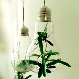 New Glass Bulb Lamp Shape Flower Water Plant Hanging Vase Hydroponic Container Terrarium Glass Home Office Wedding Decoration