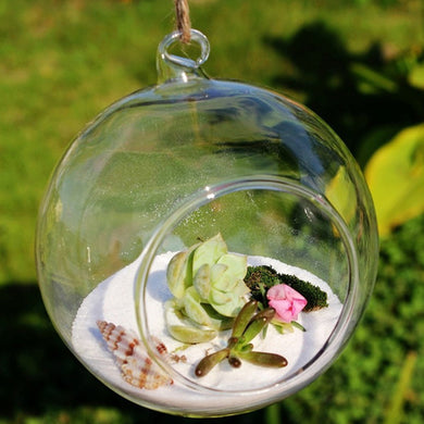 Small Ball Globe Shape Clear Transparent Hanging Glass Vase