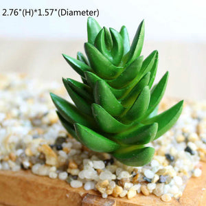 Assorted Realistic Green Faux Artificial Succulent Plants Aloe Foliage Fake Plastic Cactus Succulents Home Garden Wall Decor
