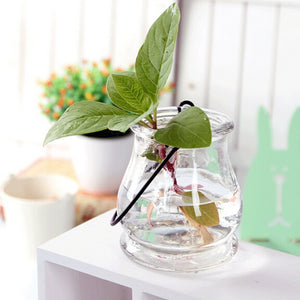 2pcs/bag Ornamental Vases Big Infusion Bag or Bottle Hydroponic Container Home Decorations Hydroponic Glass Vase