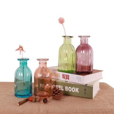 MINI DIY Glass Vase Office Decor Creative Hydroponic Bottle Home Decoration Transparent Micro-landscape Colorful Vase
