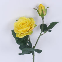 5pcs/lot Vivid Real Touch Colourful Roses