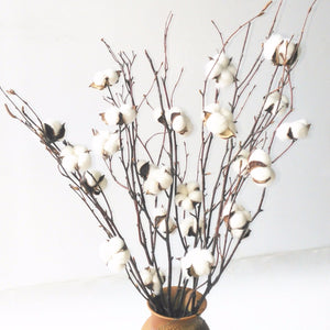 "White Natural Cotton Boll Ball Branch Spray 20-25"" Birch Twig Stalk 5 Stems"