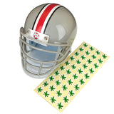 The Ohio State University Hover Helmet