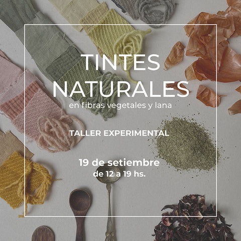 tintes naturales workshop