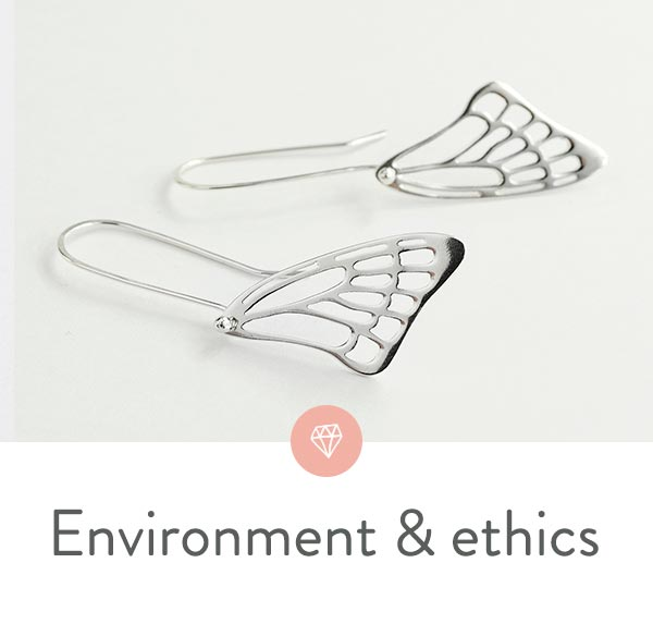 Eco-jewellery: environment, ethics and sustainability.