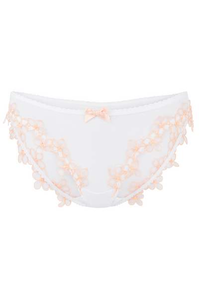 Maybelle brief