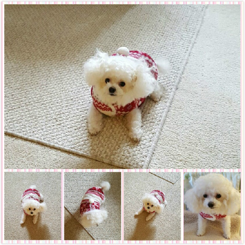 Winter Pet Clothes Cozy Snowflake Soft Dog Clothes jacket Cat Costume Pet Clothing