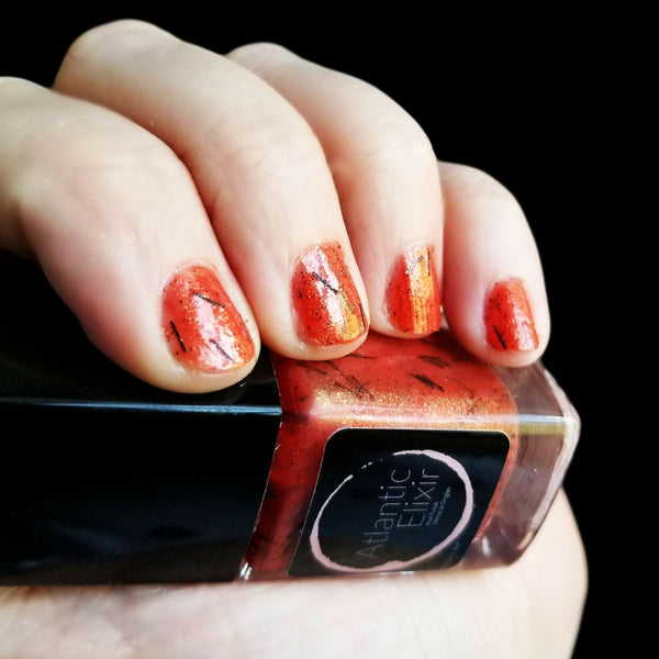 On Nails | Devil's Paintbrush | Artisan Nail Polish by Atlantic Elixir | Various variations in color, including red, orange, and yellow tones with an underlying black stem. So here's The Devil's Paintbrush in a bottle!