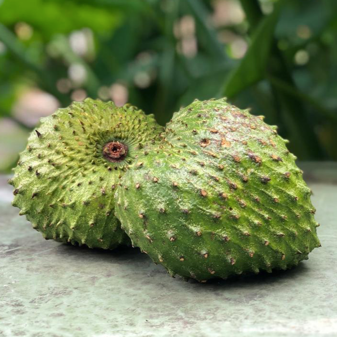 Soursop (Guanabana) Fruit