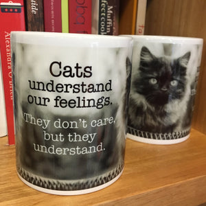 Cats understand our feelings...