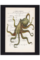 Vintage Book Page Art Print / Octopus Illustration Print / Numerical Calculus