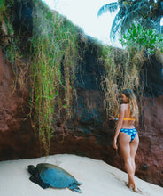 Load image into Gallery viewer, Turtle Tides Reversible Bottoms ~ Crush