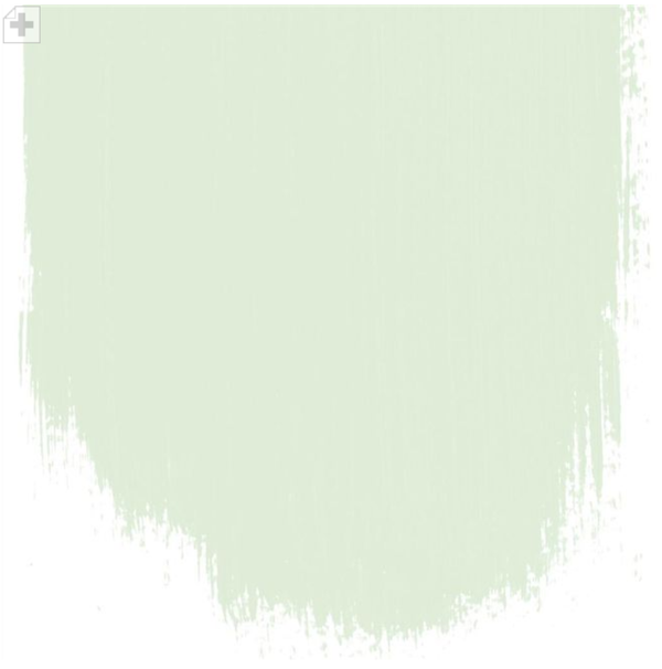 Designers Guild - Almond Flower Paint