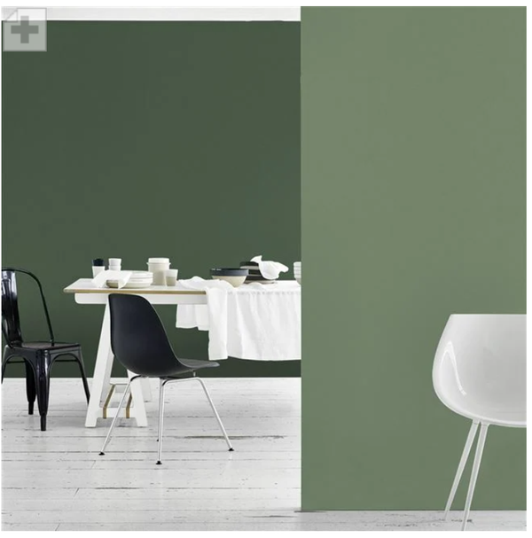 Designers Guild - Cedar Tree Paint