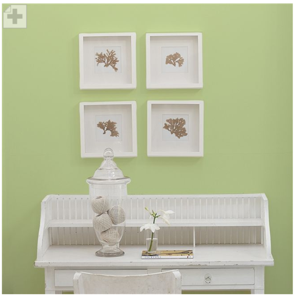 Designers Guild - Green Melon Paint