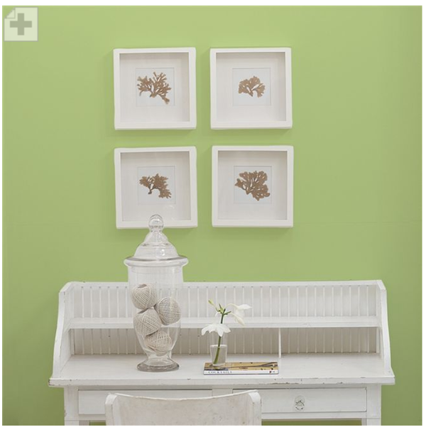Designers Guild - Mimosa Leaf Paint