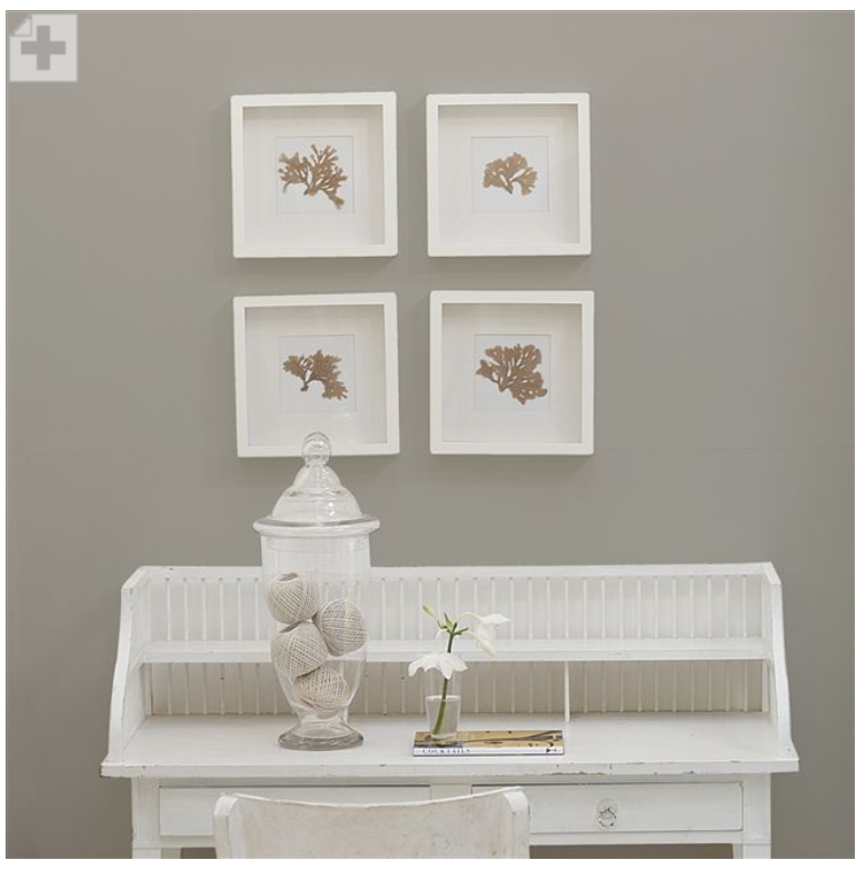 Designers Guild - Pale Graphite Paint