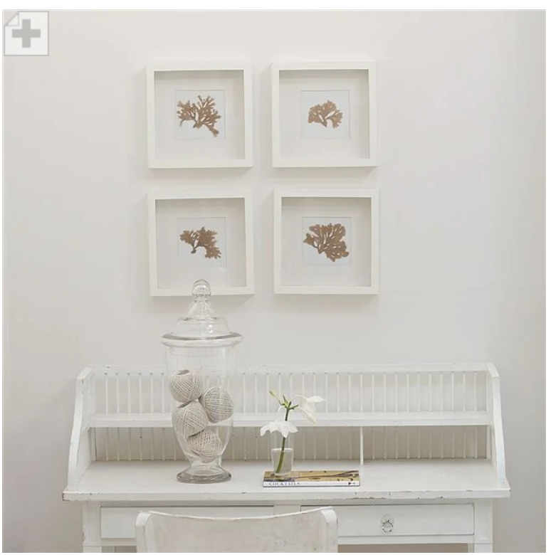 Designers Guild - Plaster White Paint