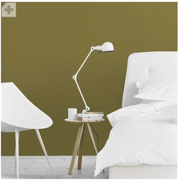 Designers Guild - Retro Olive Paint