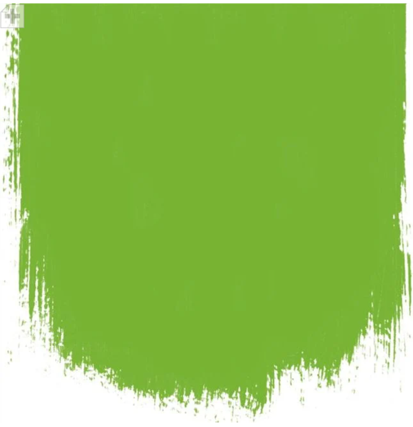 Designers Guild - Varese Leaf Paint