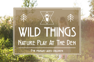 Wild Things Nature Play (Primary School)