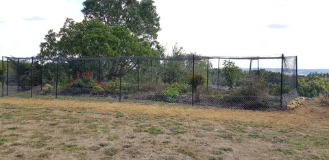 cat cage with dry grass in front